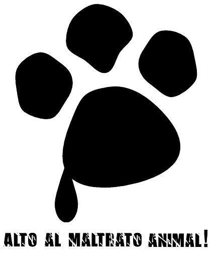 no_maltrato_animal